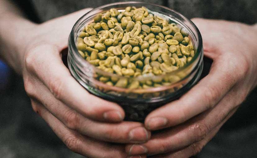 slowmov y green mama bcn beans