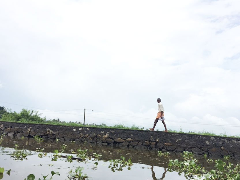 viajar india