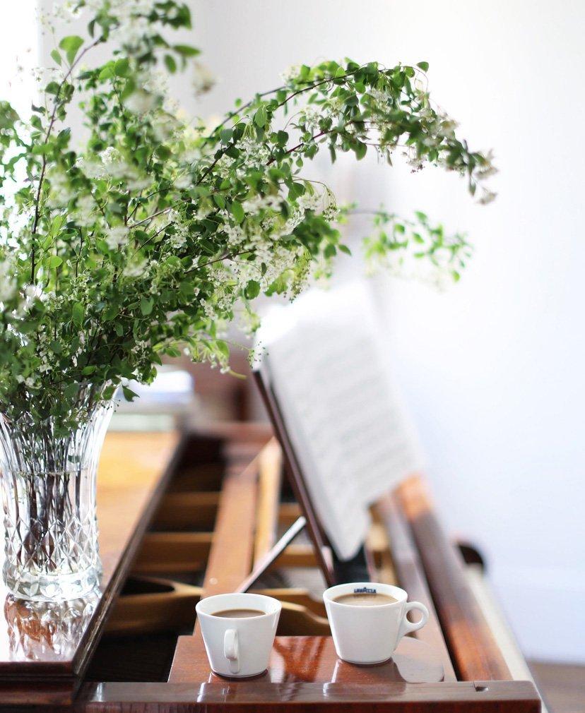 cafe plantas y piano