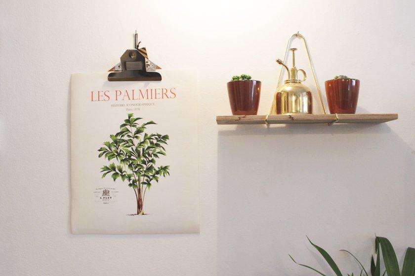 lámina con plantas decoracion
