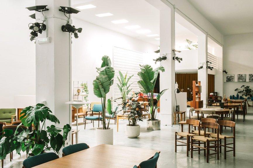 espacio decoración interiorismo