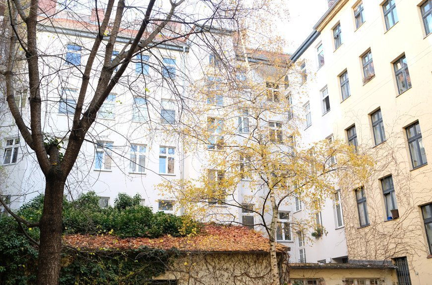 edificios y árboles