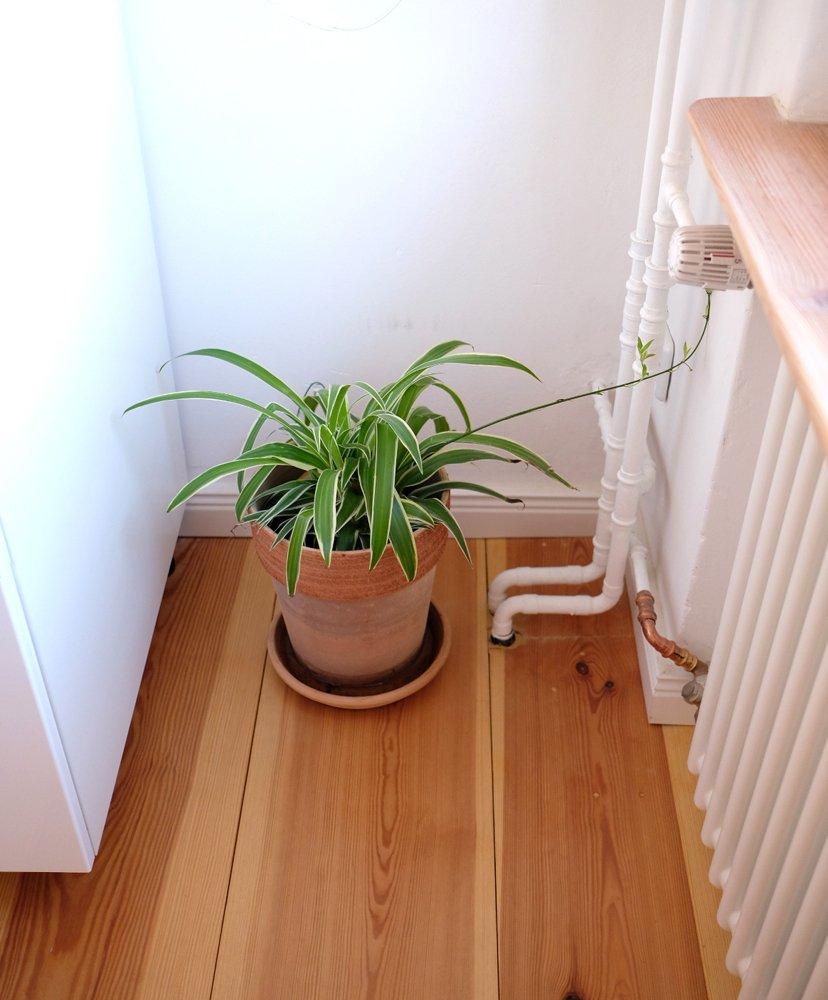 planta piso berlín